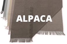 alpaca_algemeen